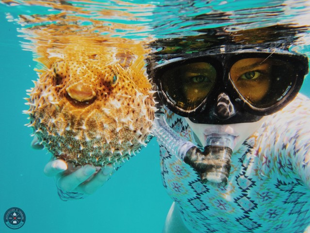 Коста-Дорада: селфи на фоне затонувших кораблей